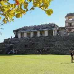 Palenque Ruinas User Photo