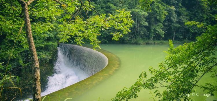 Wolong Pond1
