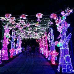 "Taohuayuan (""Peach Blossom Land"") User Photo"
