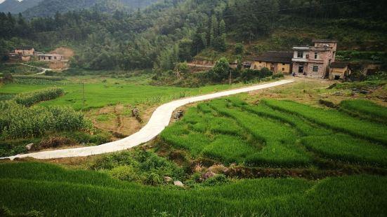 Zhongshan County Qingtang Town Shouxiangbin Original Ecological Yao Chicken Farm