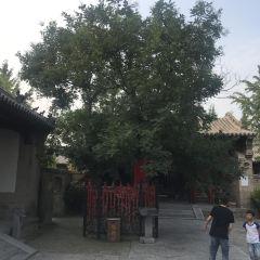 퉁멍산 여행 사진