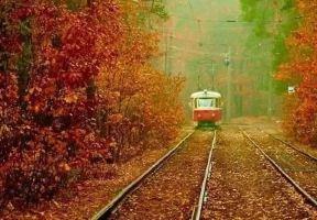 因一張秋景圖刷爆網路,這個落地簽國家的秋色比貝加爾湖更奪目!
