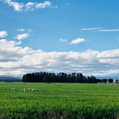 弗雷西內國家公園用戶圖片