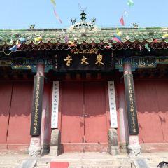 Kaifengdongda Temple User Photo