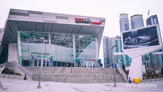 加拿大里普利水族館