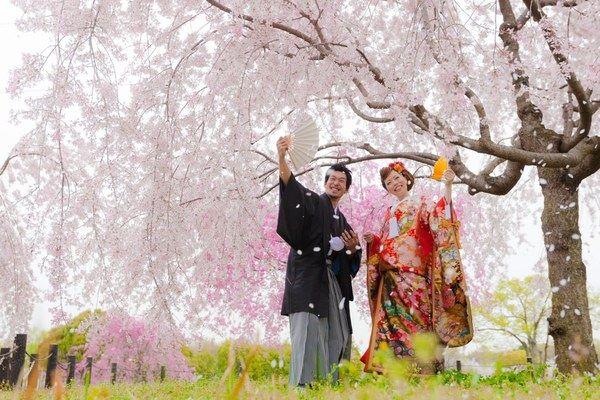 推薦6個絕佳的大阪賞櫻景點