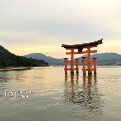 Miyajima User Photo