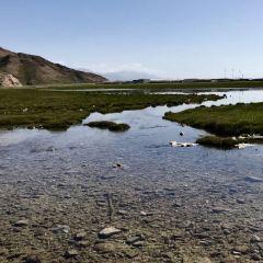 那拉提國家濕地公園用戶圖片