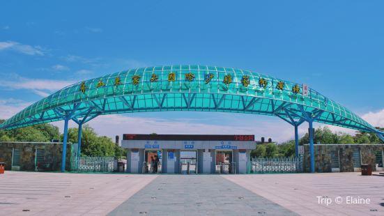 國際沙雕藝術廣場