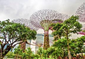 全球5大植物園