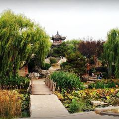 Linyi Garden Expo Park User Photo