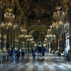 The Hall of Mirrors User Photo