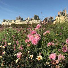 楓丹白露城堡花園用戶圖片