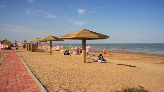 Beach Combing Park
