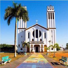 Catedral de Nossa Senhora da Boa Viagem User Photo