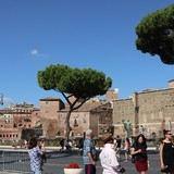 Empire State Plaza User Photo