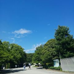 Tokyo Imperial Palace User Photo