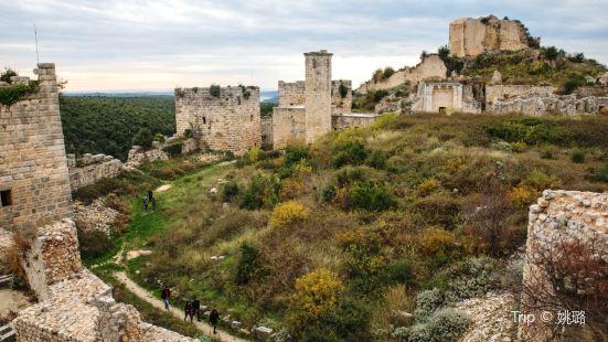 薩拉丁城堡