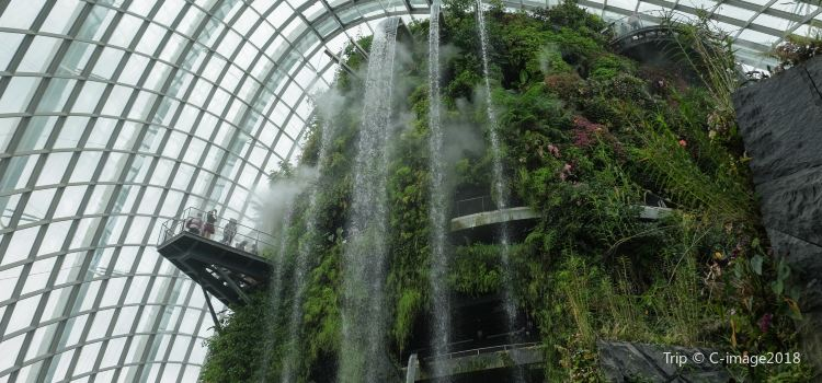 Flower Dome3