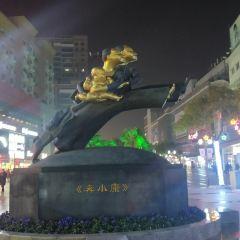 蕪湖市中山路步行街用戶圖片