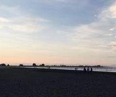 Sumner Beach User Photo