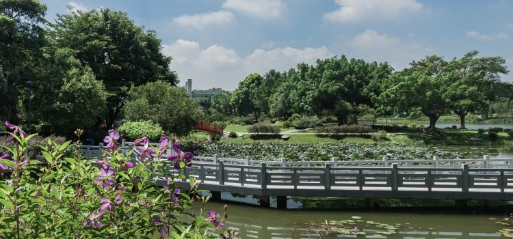 Dongguan Botanical Garden1