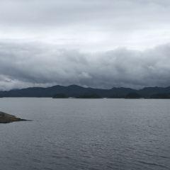 千島湖環島騎行用戶圖片