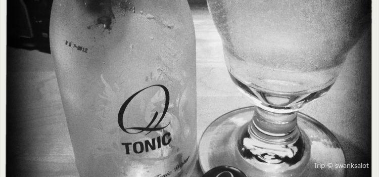 Tonic2