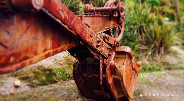 Te Puna Quarry Park1