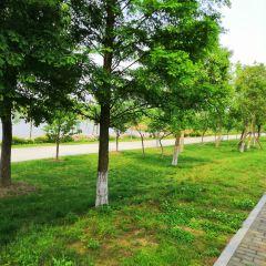 大潭山郊野公園用戶圖片