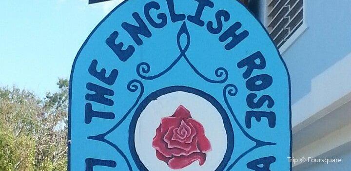 The English Rose / La Rosa Inglesa2