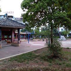 Laohaiting User Photo