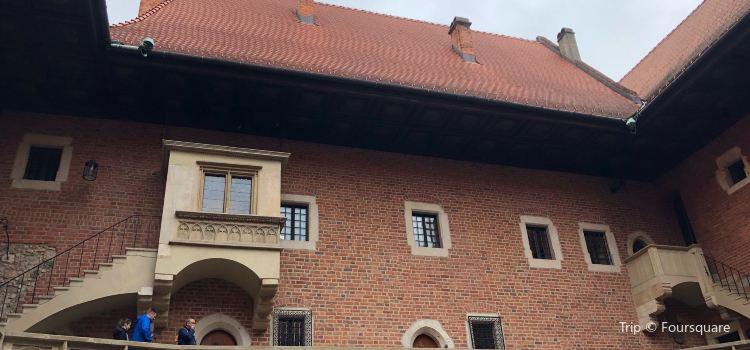 Collegium Maius1
