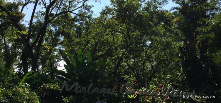 Malagos Garden Resort3