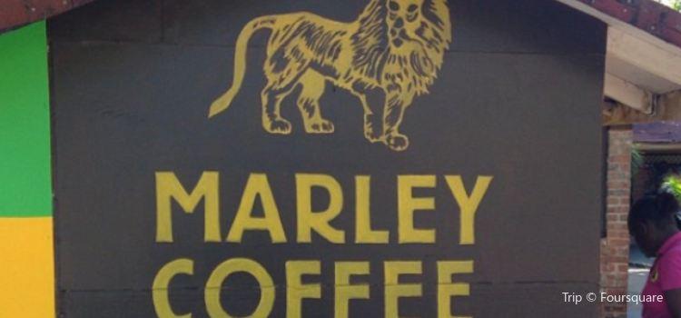 Bob Marley Museum2