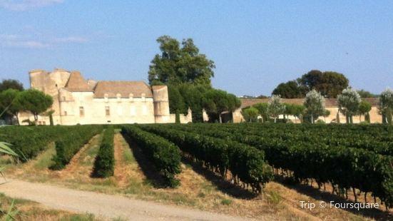 le Château de Perdiguier