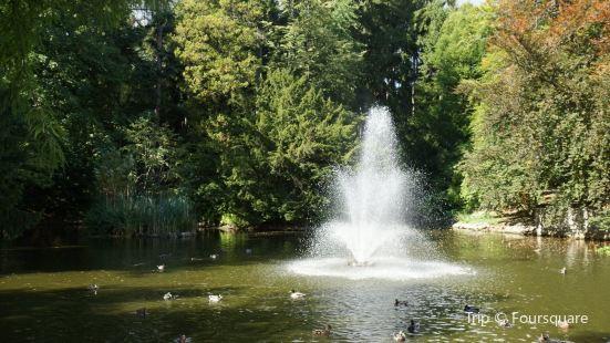 Park Szwedzki