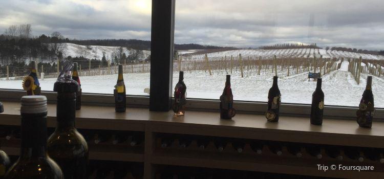 Blustone Vineyards3