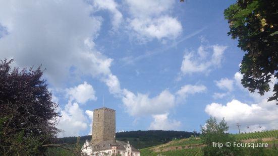 Rheingauer Weinmuseum Brömserburg
