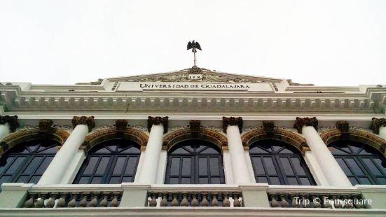 Musa Museo de las Artes