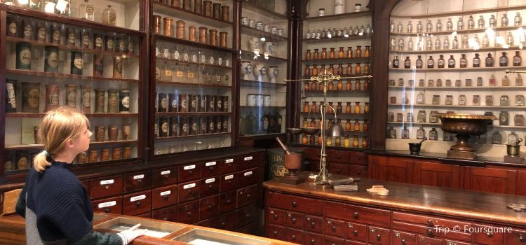 Medical Museion2