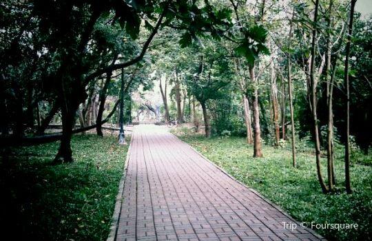 都市森林浴場