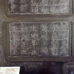 西安碑林博物館用戶圖片