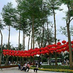 深圳灣公園用戶圖片