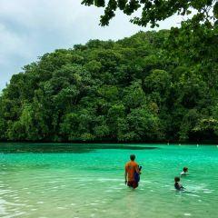珊瑚島用戶圖片