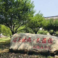 화중과기대학 여행 사진