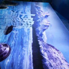 Daming Lake Underwater World User Photo