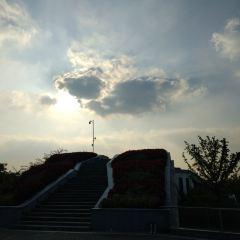梨山風景區用戶圖片