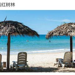 龍尾灣用戶圖片