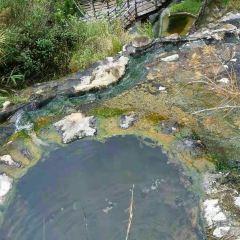 美女池溫泉用戶圖片